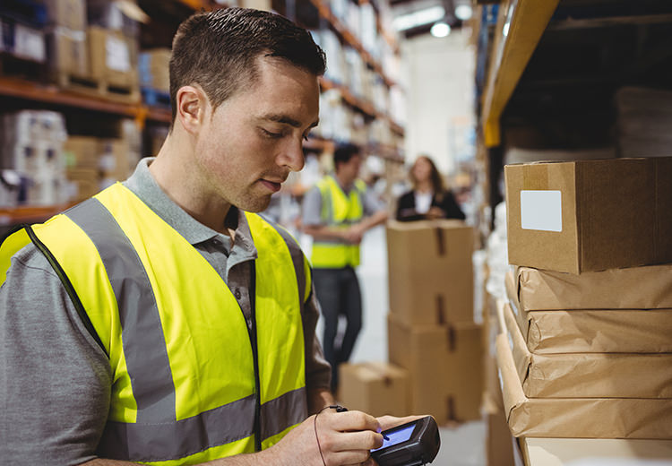 Man in warehouse reviews inventory on handheld electronic device