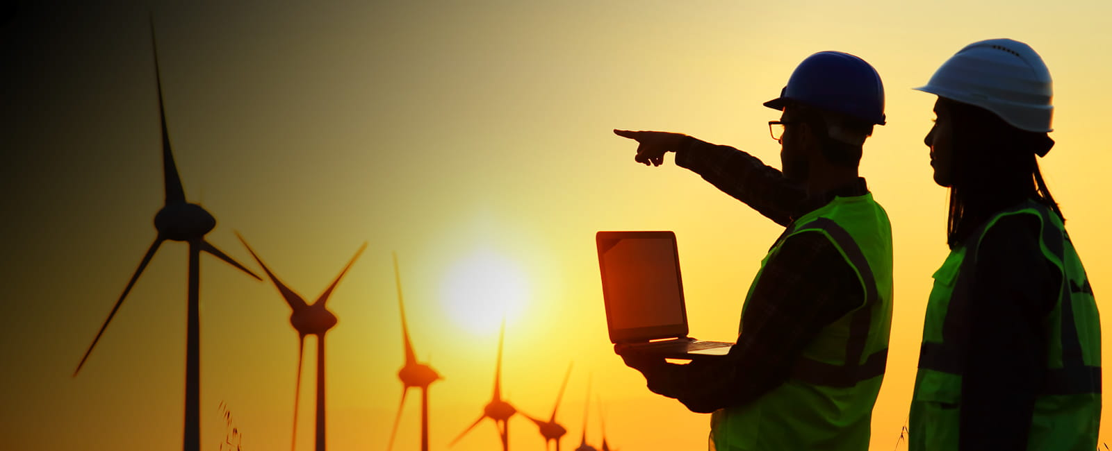 Two workers at a wind energy farm in image used on page about SAP Ariba procure to pay software solution